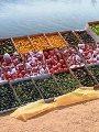 بشائر حصاد مزارع التنمية المتكاملة فى سيناء