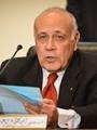 """""""العليا للانتخابات"""": 141 لجنة فرعية للمصريين بالخارج لانتخاب البرلمان"""