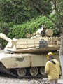بالصور..تعرف على السلاح الذى تحتل به مصر المركز الخامس عالميا قبل إسرائيل