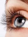 بالفيديو.. تقنية جديدة للتعرف على المجرمين من خلال قزحية العين