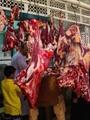 """""""الزراعة"""": طرح كميات كبيرة من اللحوم الطازجة بسعر 58 جنيها للكيلو"""