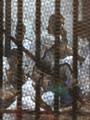 مد أجل الحكم على المتهمين فى قضية مذبحة بورسعيد لـ 9 يونيو