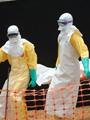 إيبولا.. الخطر الزاحف
