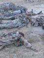 جثث الإرهابيين فى سيناء