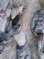 قتلى الإرهابيين فى هجمات سيناء اليوم