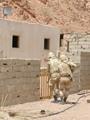 عناصر مسلحة تفشل فى تنفيذ هجوم إرهابى على معسكر الأمن فى رفح