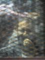 """بالفيديو..عجائب وطرائف """"التوك شو"""": جابر القرموطى يستخرج """"الفلوس من تحت البلاطة"""".. وعمرو أديب يصف علاء عبد الفتاح بـ""""المربرب"""" وأحد دومة بـ""""الغلبان"""".. وتعليق مضحك لوزير الشباب على هزائم الزمالك المستمرة"""
