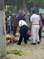 تأجيل تشييع جنازة شهداء الشرطة فى انفجار محيط الخارجية لظهر الغد