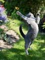 القطط بسبعة أرواح.. دراسة: القط قادر على القفز من ارتفاع 25 مترا دون أذى.. هيكله العظمى به شبكة تحمى وتدعم أنسجته وأعضاءه الداخلية.. ومرونة عضلاته تساعدها على أداء الحركات بسهولة ومرونة فائقة
