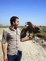 محمد صقر يمرح مع أحد أصدقائه من الصقور
