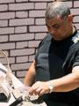 انفجار قنبلة ألقاها مجهولون على نقطة شرطة أبو زعبل بالقليوبية دون إصابات