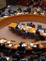 ممثل روسيا أمام مجلس الأمن: السلام فى سوريا شبه مستحيل